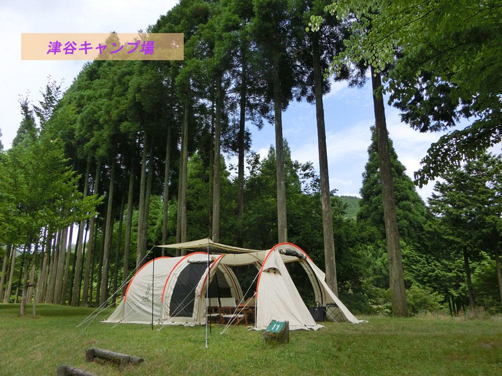 カマボコテント2で雨キャンプ【津谷キャンプ場】