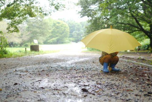 雨予報でキャンプ場の予約をキャンセルしようか迷う理由